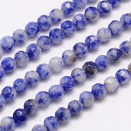 Perles de jaspe tache bleue naturelleG-G545-17-1