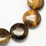 Hebras de perlas naturales tigre de piedra de ojo, plano y redondo, 16x5mm, agujero: 1 mm; aproximamente 25 unidades / cadena, 16.5