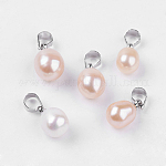 Colgantes naturales de perlas cultivadas de agua dulce, con fornituras de latón, gota, color mezclado, aproximamente 15~16.5 mm de largo, 8~9 mm de ancho, agujero: 3 mm