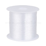 1 Roll Transparent Fishing Thread Nylon Wire, Clear, 0.25mm, about 100m/roll