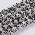 Natural Dalmation Jasper Beads Strands, Round, 8mm, Hole: 1mm, about 24pcs/strand, 7.6 inches