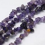 Perles en pierres gemme, améthyste naturelle, pépite, 5~12x4~7x2~7mm, Trou: 1mm
