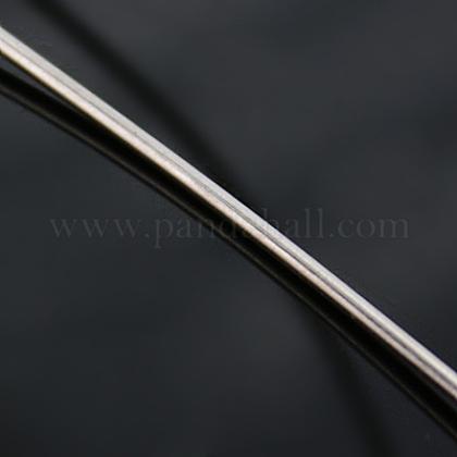 純銀線STER-D002-0.6mm-1