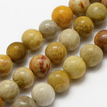 Natural Chrysanthemum Stone/Fossil Coral Beads Strands G-K194-6mm-05-1