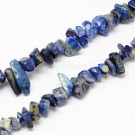Natural Lapis Lazuli Stone Bead Strands, Chip, 4~10x4~6x2~4mm, Hole: 1mm; about 210pcs/strand, 35.4inches