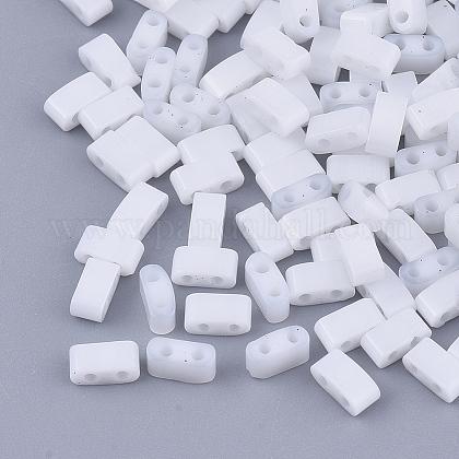 Perles de rocaille en verre 2 trou fgb®SEED-S031-M-041-1