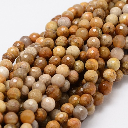 Faceted Round Natural Chrysanthemum Stone/Fossil Coral Bead StrandsG-L437-03-6mm-1