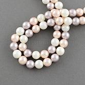 Hebras de cuentas de concha, grano de la perla de imitación, Grado A, redondo, cardo, 16mm, agujero: 1 mm; 25 unidades / cadena, 16 pulgada