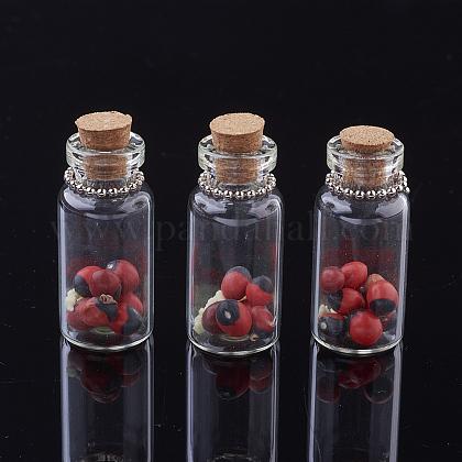 Glass Wishing Bottle Pendant DecorationsAJEW-P064-01-1