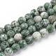 Natural Qinghai Jade Beads StrandsG-Q462-97-6mm-1