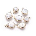 Colgantes naturales de perlas cultivadas de agua dulce, borde plateado, con fornituras de latón, pepitas, dorado, 15~20x11~13.5x5~6mm, agujero: 1.8 mm