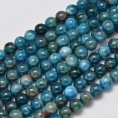 Natural Apatite Round Bead Strands, 6mm, Hole: 1mm; about 65pcs/strand, 15.5