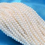 Round Shell Pearl Bead Strands, White, 2.5mm, Hole: 0.5mm; about 169pcs/strand, 15.74