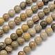 Natural Chrysanthemum Stone/Fossil Coral Round Bead StrandsG-N0166-05-8mm-1