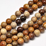 Natural Petrified Wood Round Bead Strands, 10mm, Hole: 1mm; about 37pcs/strand, 15inches