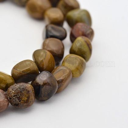 Natural Petrified Wood Bead StrandsG-P070-41-1
