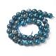 Natural Apatite Beads StrandsG-L554-01-10mm-3