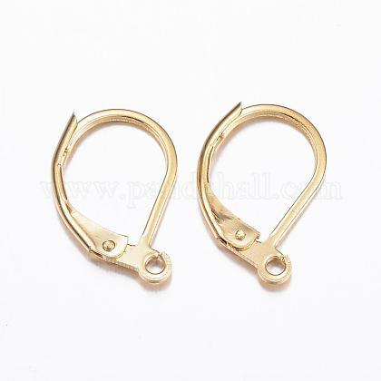 Accessoires de boucle d'oreille de dormeuse en 304 acier inoxydableX-STAS-P166-12G-1